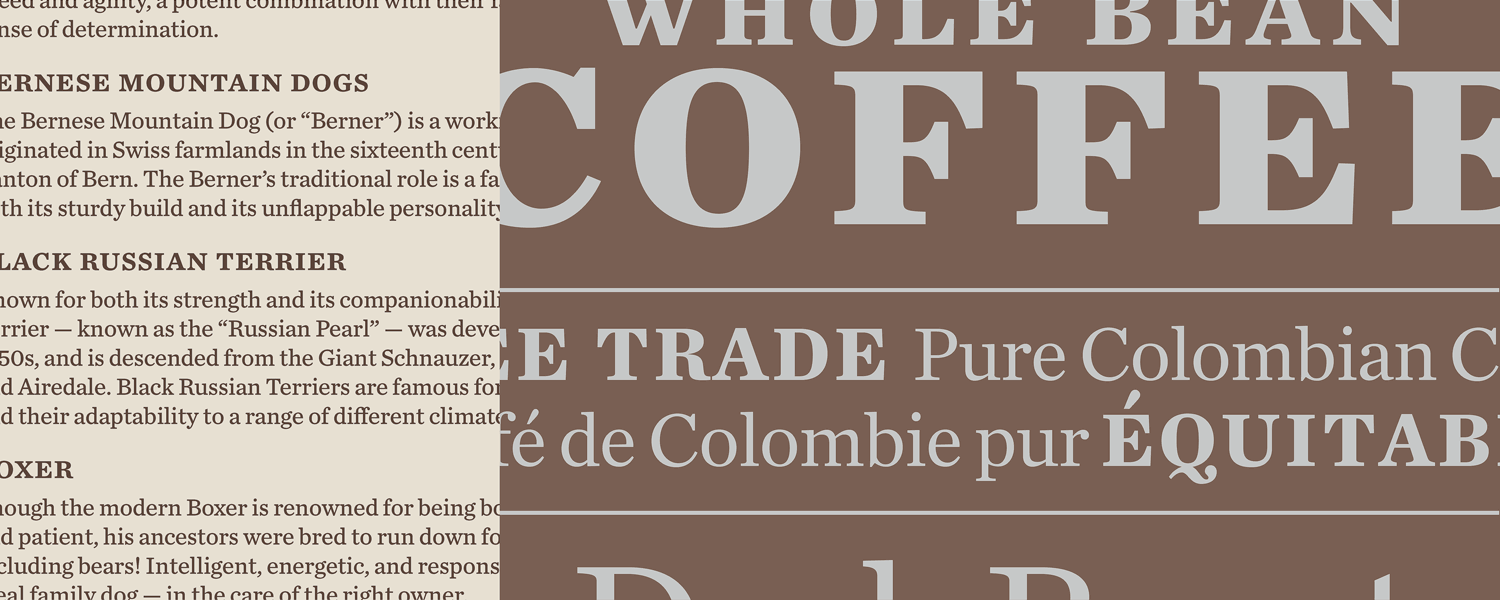 Chronicle Text Fonts  Hoefler  Co